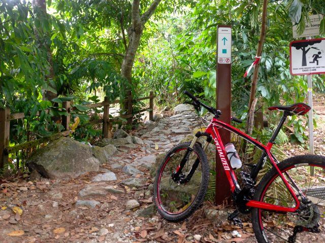 Hitting Singapore S Sparse But Precious Mountain Bike