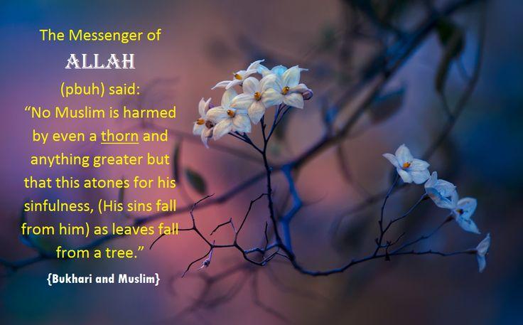 Sins fall from him....