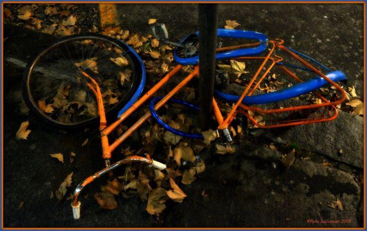 #Torino #bike