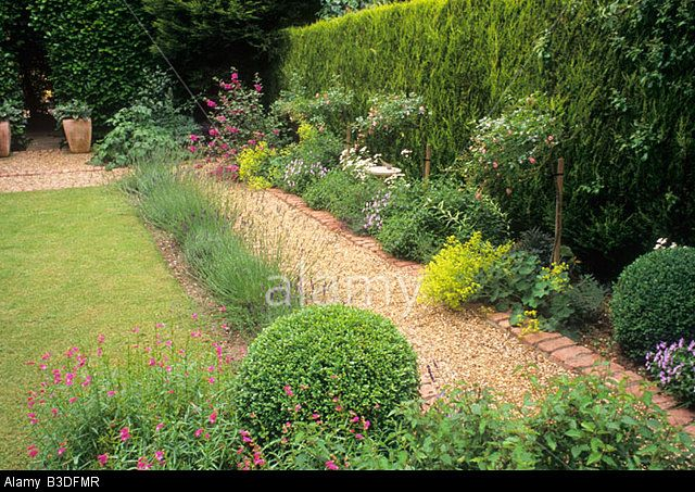 gravel brick path border evergreen leylandii hedge lawn small garden design small back garden planters stock photo