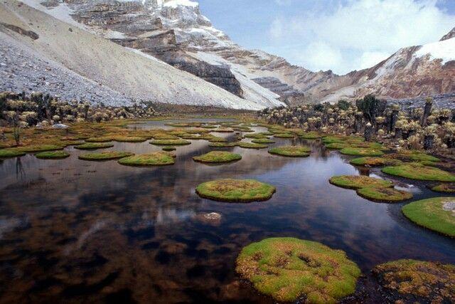 Parque nacional natural El Cocuy, Boyacá