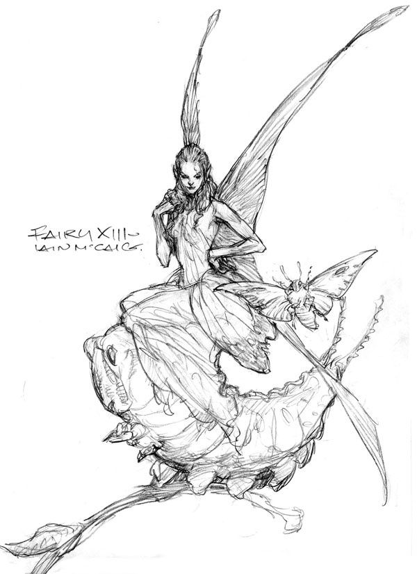 The Fairy Sketch Books Of Iain Mccaig Endicott Studio For
