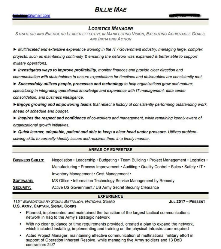 Professional and Executive Resume Examples I Top Resume