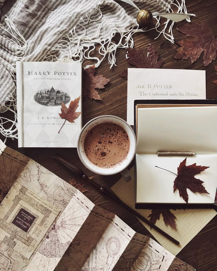 Fall time feels magical, maybe that's why its the perfect time to snuggle in and read Harry Potter.