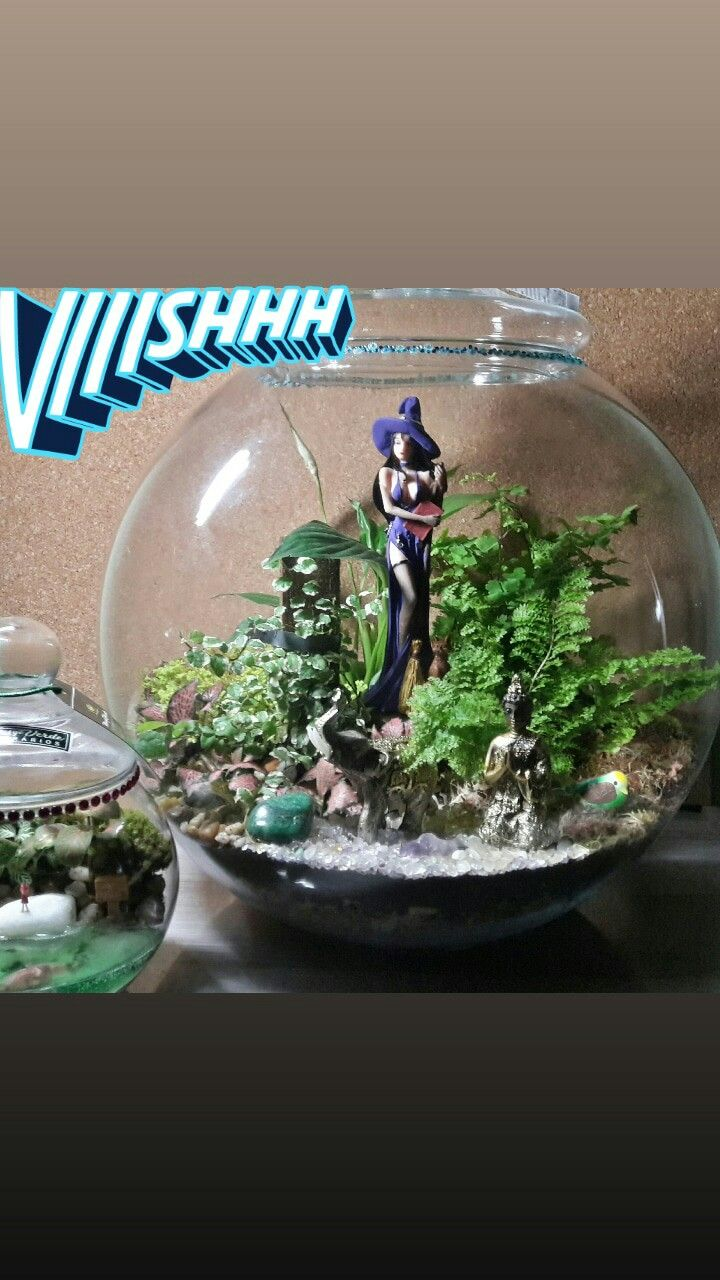 Pin by The Geekery Book Review on Tiny Terrarium Worlds