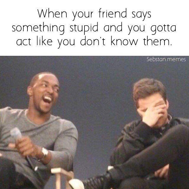 Image result for sebastian stan memes