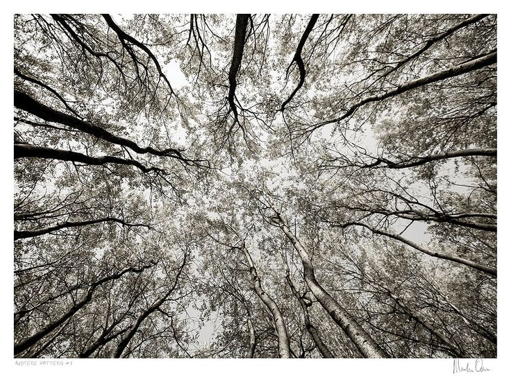 A signed black and white fine art photography print availble for purchase. Austere Pattern 1