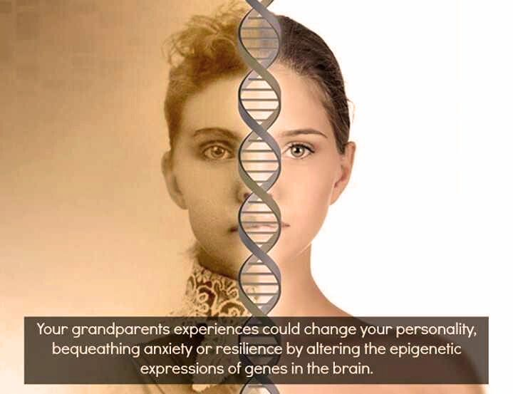 That's why we do in ThetaHealing® belief work on the genetic level...