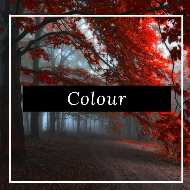 Discover the latest colour photography and fine art prints from our talented artists around the world, only on FineArtSeen. Enjoy the Free Delivery.