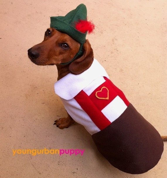 Dachshund Lederhosen.  I kind of really want to get this for Tucker..