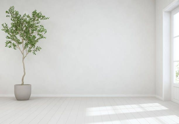 Free Empty Room Images Pictures And Royalty Free Stock Photos Freeimages Com Empty Rooms Interior Living Room Empty Empty Room Living room zoom background free