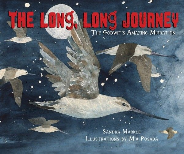 Free activities and discussion ideas for The Long, Long Journey, a picture book about bird migration. #MillbrookPictureBooks