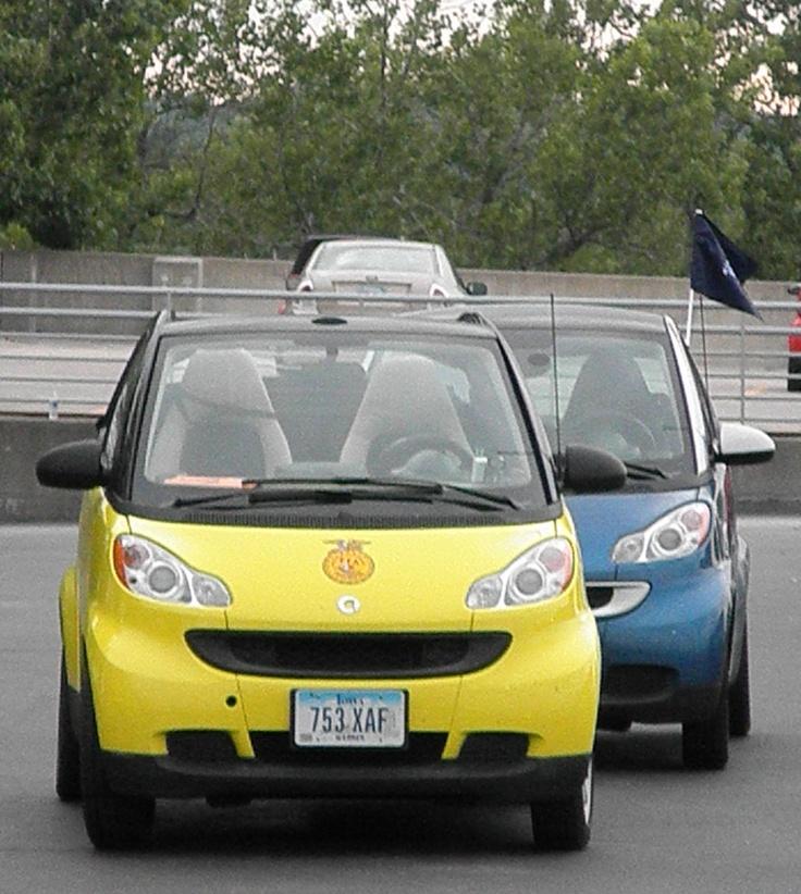Yellow Blue - SMART CARS -