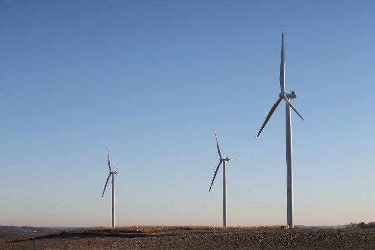 C'est une première, une entreprise d'énergie éolienne vient d'être econnue coupable de la mort d'aigles protégés aux Etats-Unis.