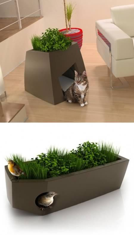"Jardin Chic is showing that pet friendly furniture can also be ""chic"". Take a look at these planters with dual functions. They serve as green spaces and beds for cats, dogs or birds."