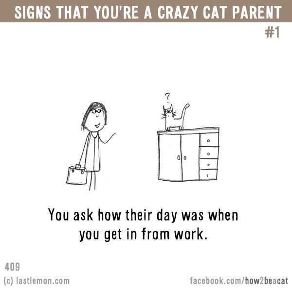 Signs that you're a CRAZY CAT PARENT #1: You ask how their day was when you get in from work.