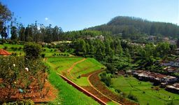 South India 4 Nights Family Package