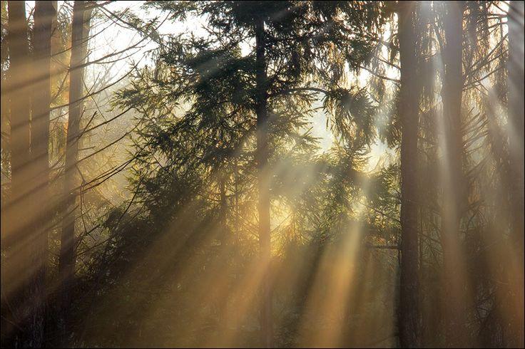 Awakening by Patrick Zephyr