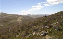 The Australian Alps =largest area of alpine country in the nation, from Canberra through the Snowy Mountains of New South Wales and along the Great Dividing Range to north east of Melbourne. More than 10 peaks exceed 2100 metres, including Mt Kosciuszko, Australia's highest mountain at 2228 metres.  The 655 k Australian Alps Walking Track generally follows ridges and high plains through some of the highest country in Australia mostly remote. can walk track in 10 wks, or walk shorter sections