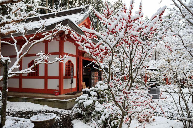 三千院・雪景色(奥の院編) : 花景色-K.W.C. PhotoBlog