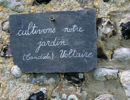 Herbarium ST Valery sur Somme (50)
