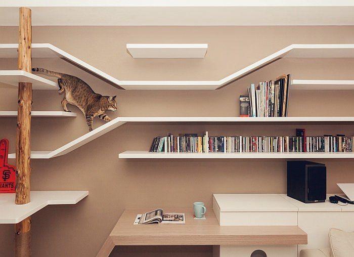 Não só o seu gato, mas talvez você também fique com inveja desta casa. O projeto é moderno e com detalhes muito bem pensados para que o seu amigo felino te