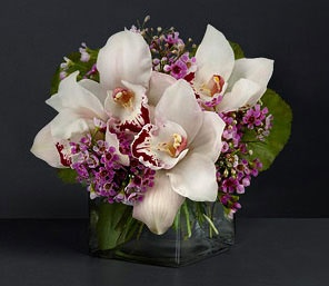 Pink,White,Orchid,Arrangement