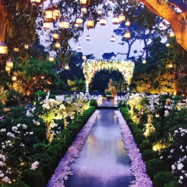 Romantic Garden Wedding Theme: 17 Best Images About The Secret Garden/garden Of Eden