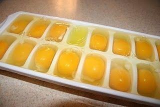Freezing Eggs, long term storage