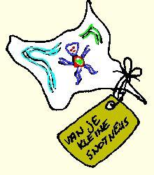 Vaderdag: zakdoeken versieren met textielstiften --> van je kleine snotneus
