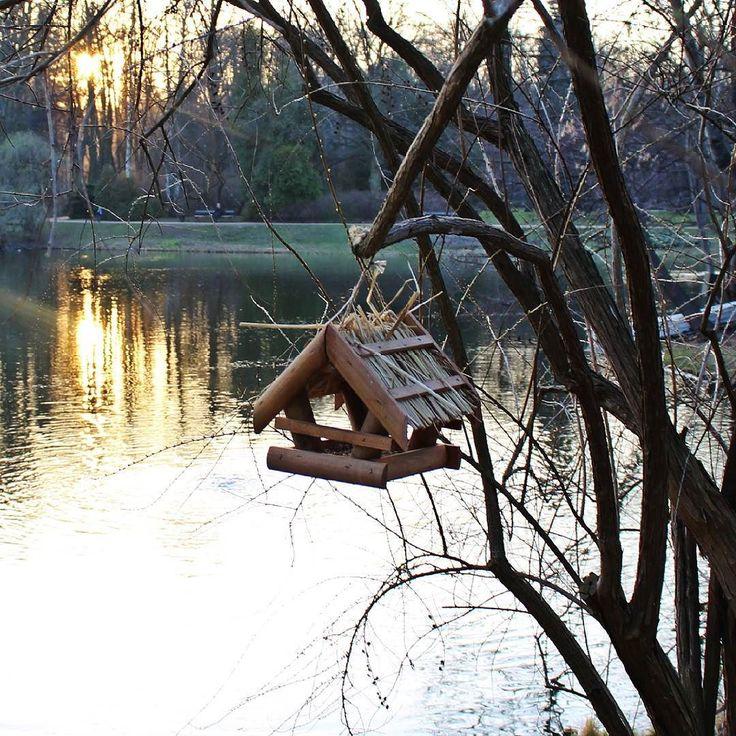Miłego dnia. Już po zimie;) #primavera #spring #wiosna #dom #karmnik #zachód #zachódsłońca #łazienkikrólewskie #warszawa #warsaw #Polska #Poland