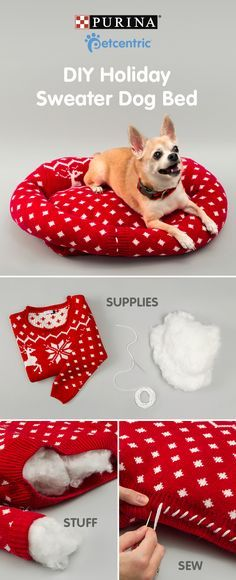 ♥ DIY Pet Stuff ♥  Sign up for our newsletter and receive more doggie details and DIYs. 'Tis the season for repurposing! Ugly holiday sweaters aren't just fun for parties, you can turn last year's festive pullover into your dog's new favorite place to sleep. Crafting a holiday sweater bed for your pup is easy. To make this dog bed you'll need: an old sweatshirt, a needle and thread, and pillow stuffing. Brought to you by Petcentric, a Purina brand & your trusted source for helpful tips & fun…