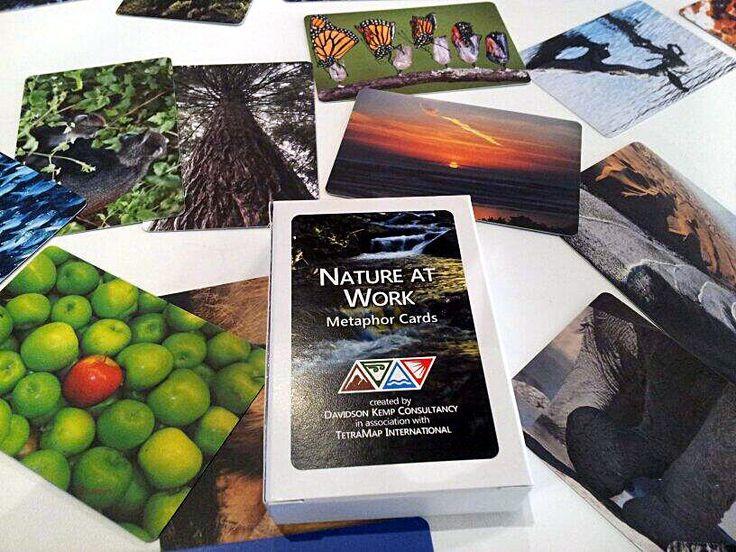 TetraMap - Nature at Work Metaphor Cards