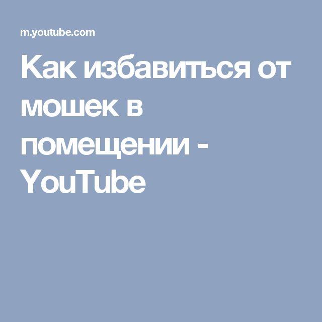 Как избавиться от мошек в помещении - YouTube