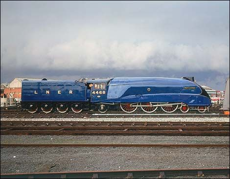 Google Image Result for http://www.bbc.co.uk/tyne/content/images/2006/10/16/mallard_470x366.jpg