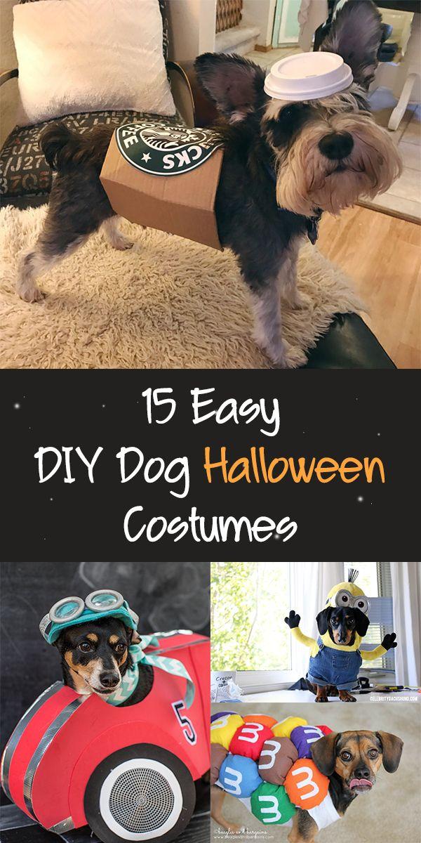 15 Easy Diy Dog Halloween Costumes Dog Halloween Costumes Diy