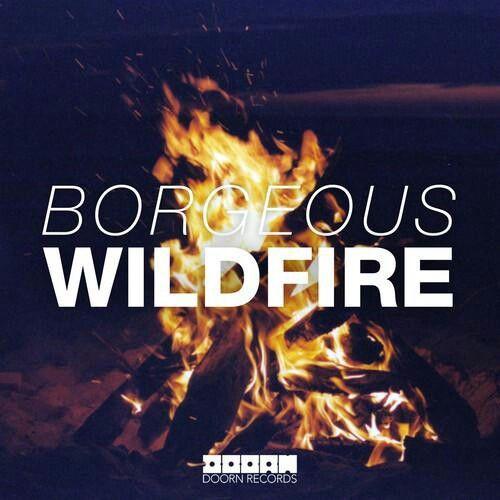 Wildfire >> Borgeous (Doorn Records) ;)