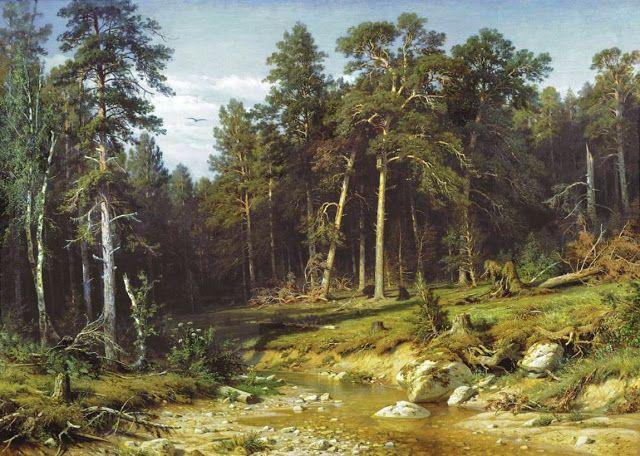 Πευκοδάσος στο Viatka. (1872)