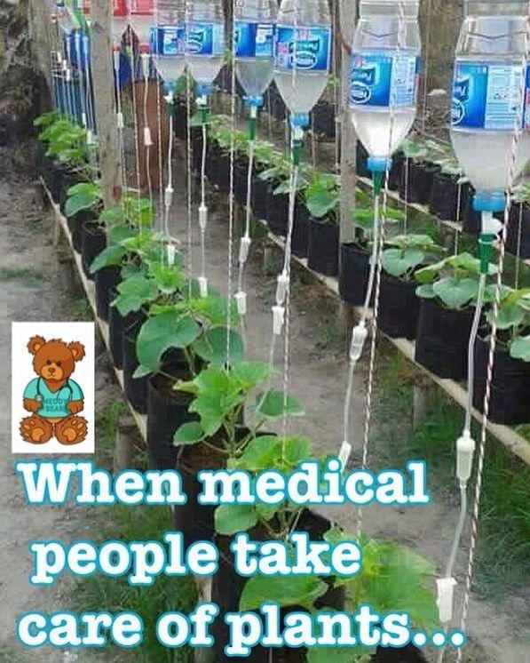 When medical people take care of plants. #gardener #medicalPlanting
