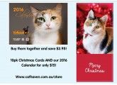 Cat Haven christmas cards