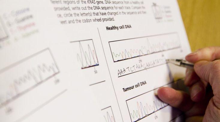 81 best Mitosis, meiosis, ciclo celular y cromosomas images on ...