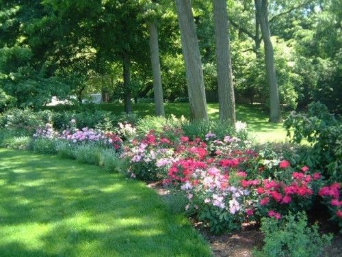 Best Flowerbeds Images On Pinterest Landscaping Garden Ideas