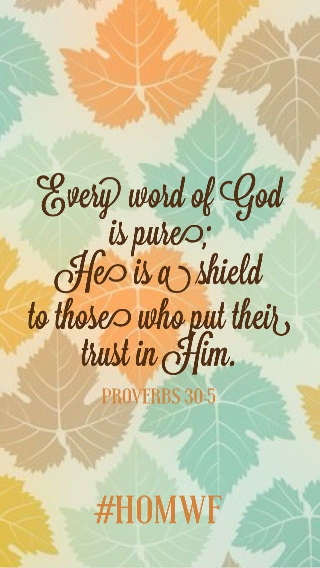 """smartphone #lockscreen: """"Every word of God is pure; He is a shield to those who put their trust in Him"""" #Proverbs 30:5 // #homwf #biblestudy #scripture #bible #bibleverse"""