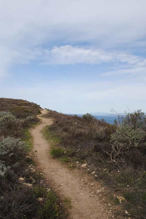 Workout Ideas: Here's to coastal hiking on the weekends!