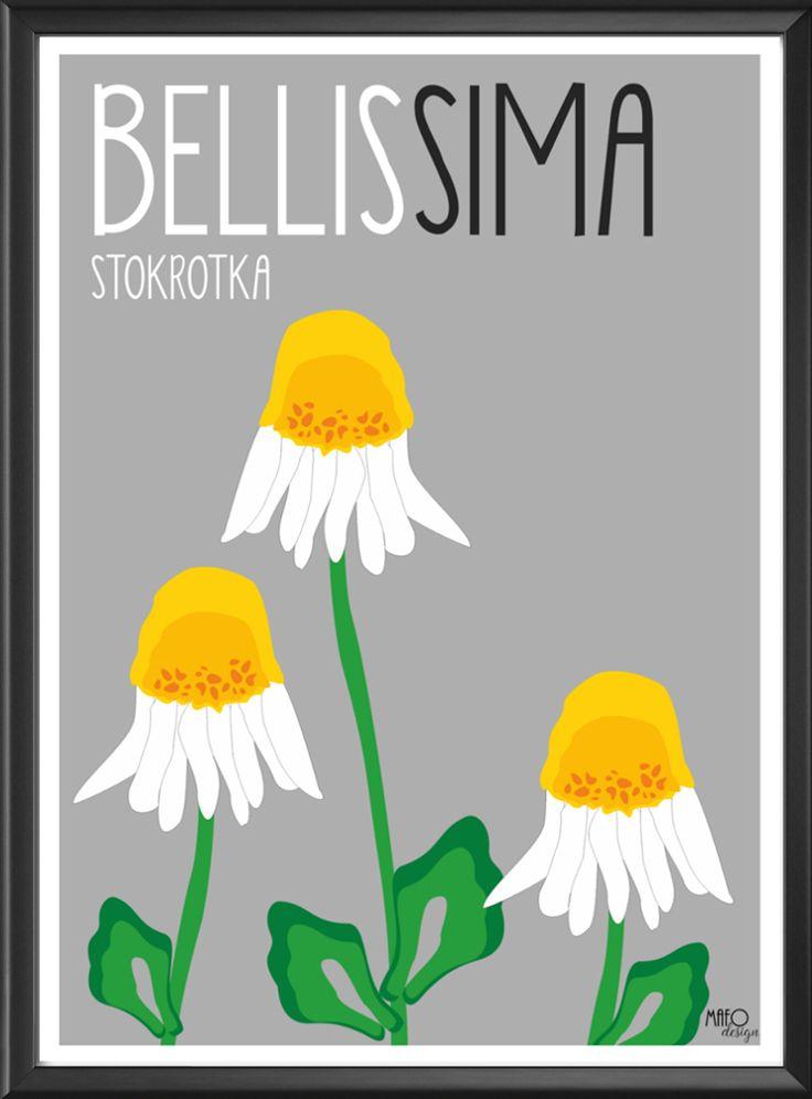 Plakat projektu MAFOdesign Bellissima Stokroka do kupienia tylko na www.mafodesign-sklep.pl #plakat #design #stokrotki #poster #botanical #interior #decor