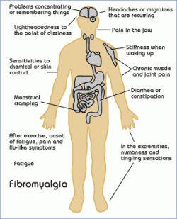 Soulagez les symptômes de la fibromyalgie grâce à la médecine chinoise. Séances d'aupuncture régulières et phytothérapie apportent un réel soulagement au niveau des douleurs et sur le plan psychologique
