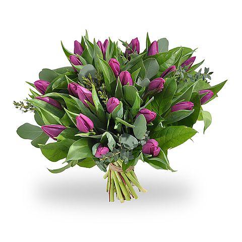 Paarse tulpen - te bestellen bij Boeketten.nl