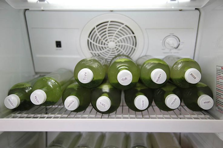 Fully stocked all day with green juice - http://www.amyrachelle.com/info/1-day-raw-food-detox-workshop/