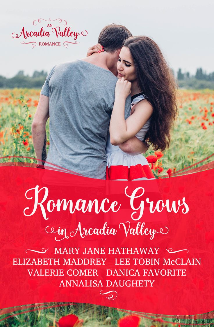 """It's great to be back at InspyRomance! I took some time away as I was in a """"hectic season"""" of life (can anyone relate?) but now I have time again to devote to this group. The past several months ha…"""