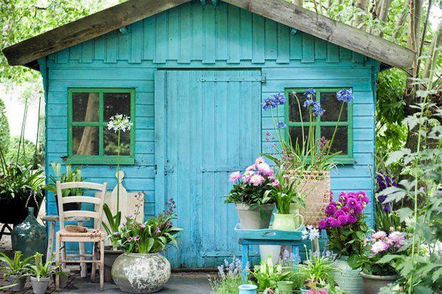 Zdjęcie numer 3 w galerii - Kwiaty cebulkowe podkreślą styl ogrodu